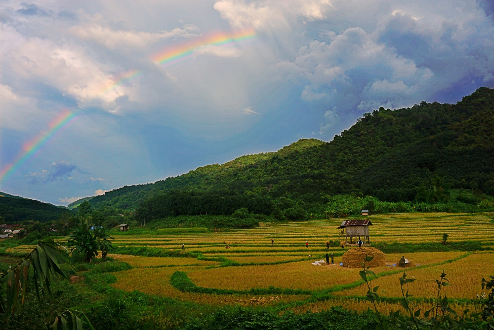 Rainbow over rice paddies in Luang Namtha, Province
