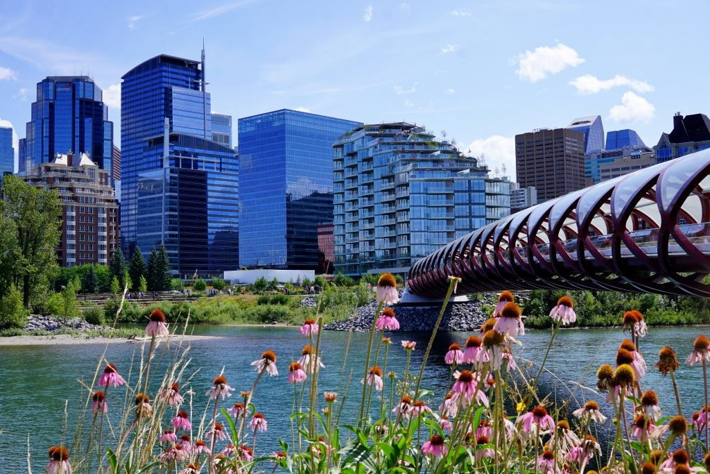 The Peace Bridge in Calgary, Alberta, with skyline in the background